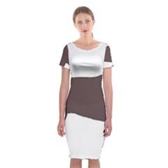 American Water Spaniel Silo Color Classic Short Sleeve Midi Dress