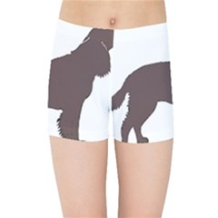 American Water Spaniel Silo Color Kids Sports Shorts