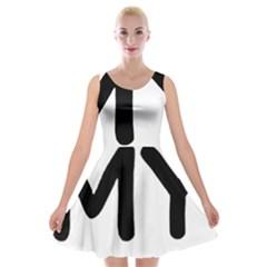 I Love My American Water Spaniel Velvet Skater Dress