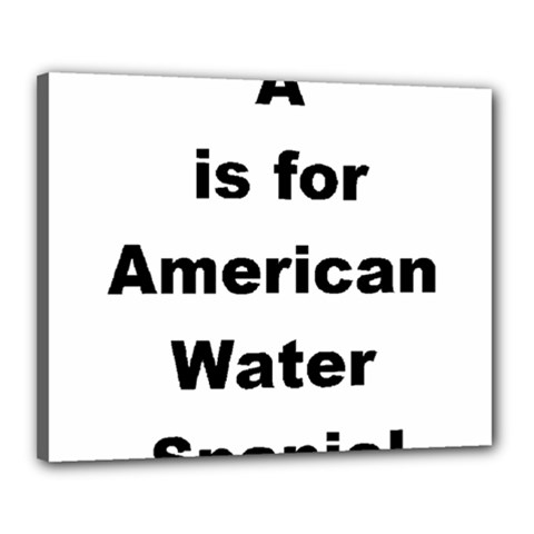 A Is For American Water Spaniel Canvas 20  X 16