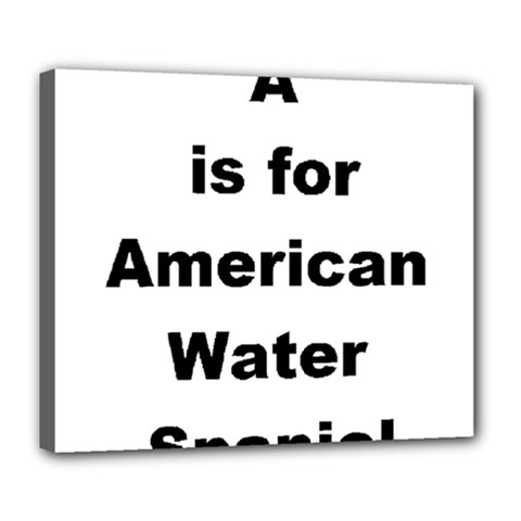 A Is For American Water Spaniel Deluxe Canvas 24  X 20