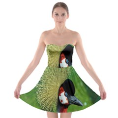 Bird Hairstyle Animals Sexy Beauty Strapless Bra Top Dress