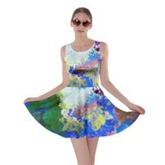 Color Mix Canvas                           Skater Dress
