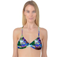 Color Mix Canvas                           Reversible Tri Bikini Top