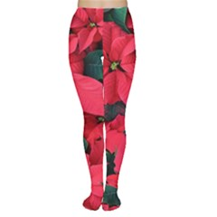 Red Poinsettia Flower Women s Tights