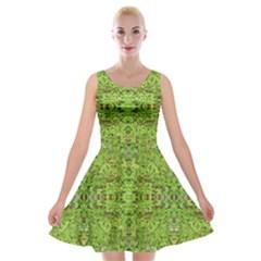 Digital Nature Collage Pattern Velvet Skater Dress