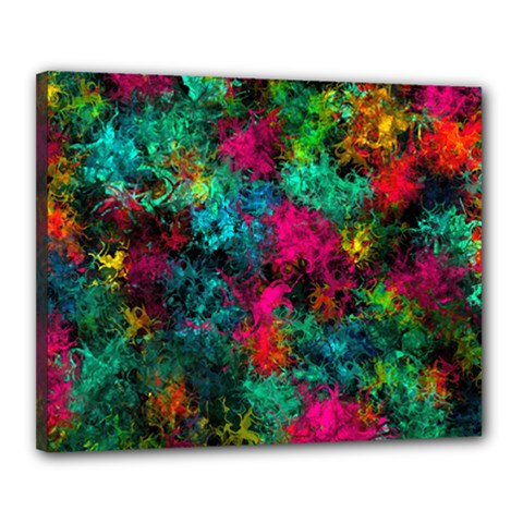 Squiggly Abstract B Canvas 20  X 16