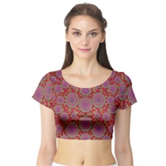 Hearts Can Also Be Flowers Such As Bleeding Hearts Pop Art Short Sleeve Crop Top (tight Fit)