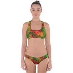 Wonderful Marbled Structure F Cross Back Hipster Bikini Set