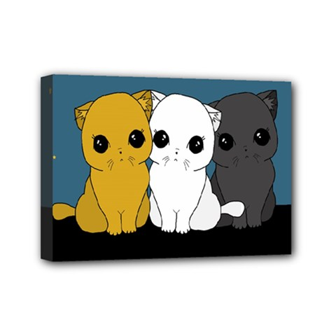 Cute Cats Mini Canvas 7  X 5
