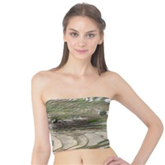 Rice Fields Terraced Terrace Tube Top