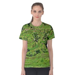 Greenery Paddy Fields Rice Crops Women s Cotton Tee
