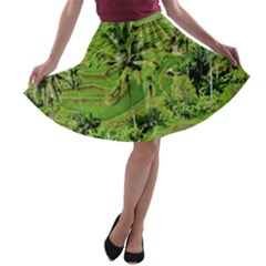 Greenery Paddy Fields Rice Crops A Line Skater Skirt