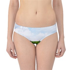 Bali Rice Terraces Landscape Rice Hipster Bikini Bottoms