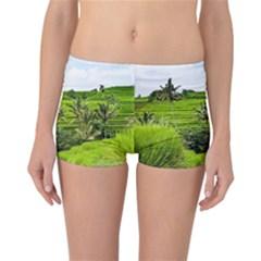 Bali Rice Terraces Landscape Rice Reversible Boyleg Bikini Bottoms