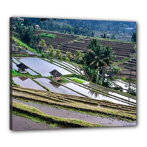 Rice Terrace Rice Fields Canvas 24  X 20