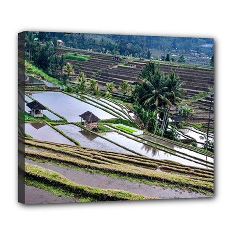 Rice Terrace Rice Fields Deluxe Canvas 24  X 20