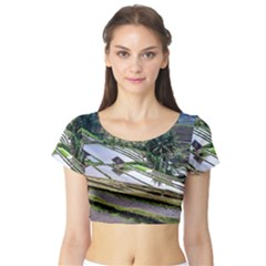 Rice Terrace Rice Fields Short Sleeve Crop Top (tight Fit)