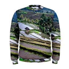 Rice Terrace Rice Fields Men s Sweatshirt