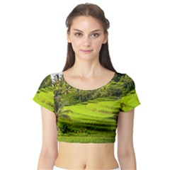 Rice Terrace Terraces Short Sleeve Crop Top (tight Fit)
