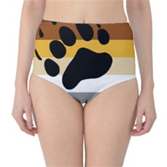 Bear Pride Flag High Waist Bikini Bottoms