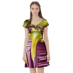 Yellow Magenta Abstract Fractal Short Sleeve Skater Dress