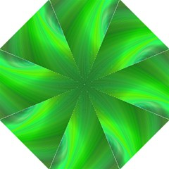 Green Background Abstract Color Folding Umbrellas