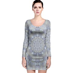 Flower Lace In Decorative Style Long Sleeve Bodycon Dress