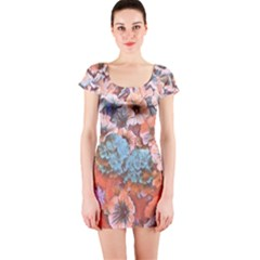 Dreamy Floral 4 Short Sleeve Bodycon Dress