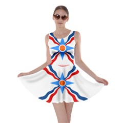 Assyrian Flag  Skater Dress