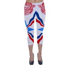 Assyrian Flag  Capri Winter Leggings