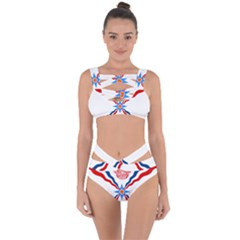 Assyrian Flag  Bandaged Up Bikini Set