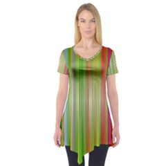 Rainbow Stripes Vertical Colorful Bright Short Sleeve Tunic