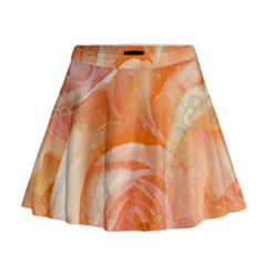 Flower Power, Wonderful Roses, Vintage Design Mini Flare Skirt