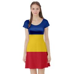 Gozarto Flag Short Sleeve Skater Dress
