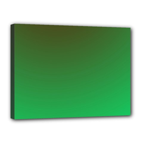 Course Colorful Pattern Abstract Green Canvas 16  X 12