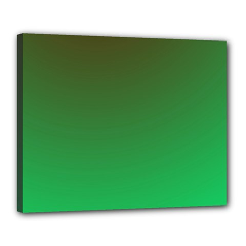 Course Colorful Pattern Abstract Green Canvas 20  X 16