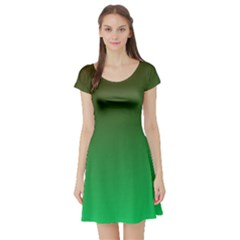 Course Colorful Pattern Abstract Green Short Sleeve Skater Dress
