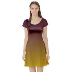 Course Colorful Pattern Abstract Short Sleeve Skater Dress