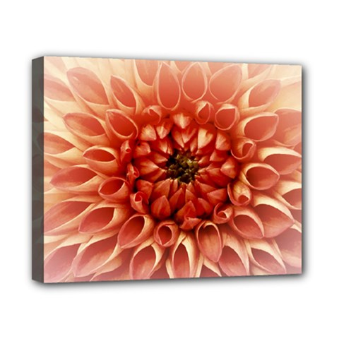 Dahlia Flower Joy Nature Luck Canvas 10  X 8