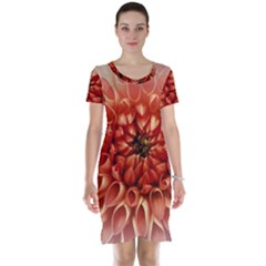 Dahlia Flower Joy Nature Luck Short Sleeve Nightdress