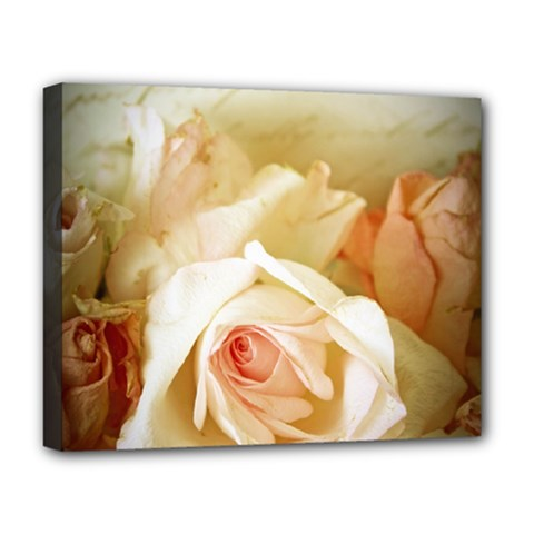 Roses Vintage Playful Romantic Deluxe Canvas 20  X 16