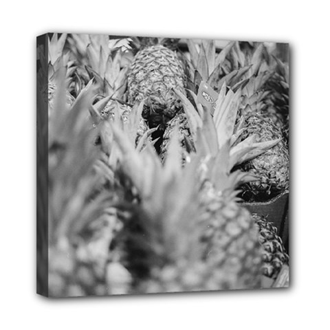 Pineapple Market Fruit Food Fresh Mini Canvas 8  X 8