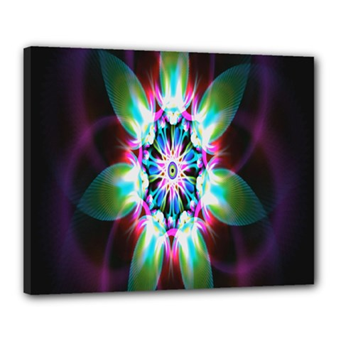 Colorful Fractal Flower Star Green Purple Canvas 20  X 16