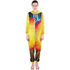 Cross Section Earth Field Lines Geomagnetic Hot Hooded Jumpsuit (ladies)