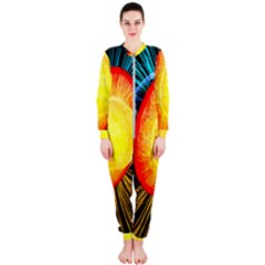 Cross Section Earth Field Lines Geomagnetic Hot Onepiece Jumpsuit (ladies)