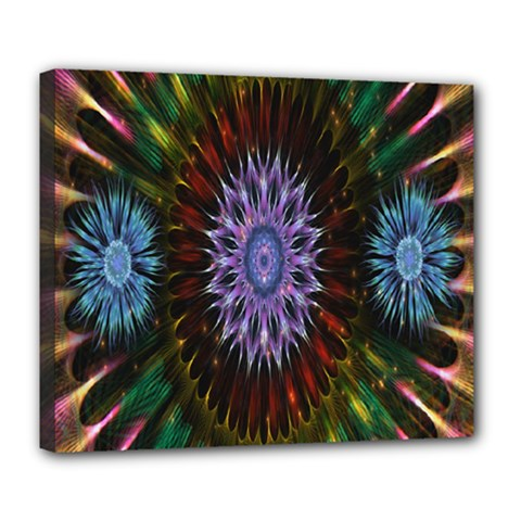 Flower Stigma Colorful Rainbow Animation Gold Space Deluxe Canvas 24  X 20