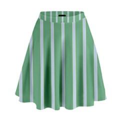 Green Line Vertical High Waist Skirt
