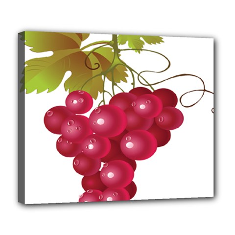 Red Fruit Grape Deluxe Canvas 24  X 20