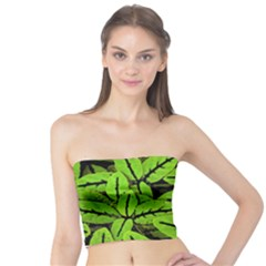 Nature Print Pattern Tube Top